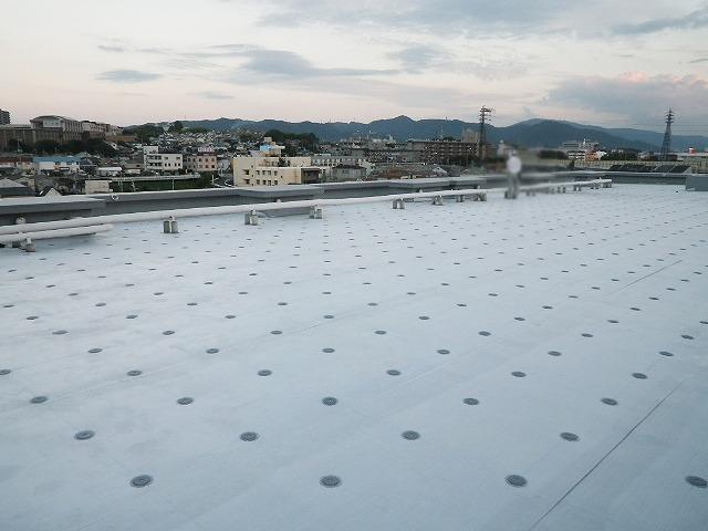 屋上防水 防水工事 大阪